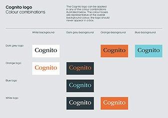 cognito_003
