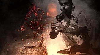 f1_india_2013_06