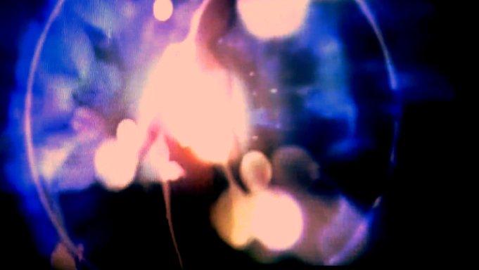 http://vimeo.com/96178576 cdn1@placebo/PLCBO_Tour_720.mp4