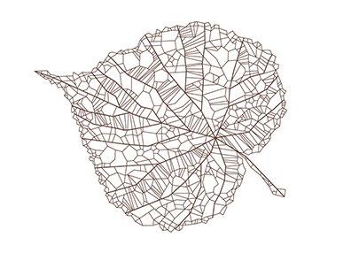 Leaf2-405