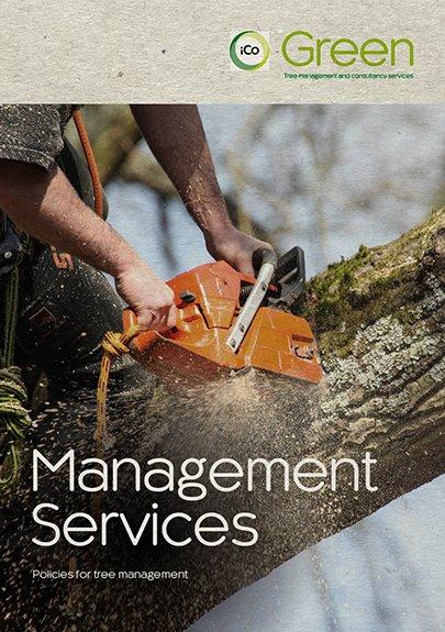 ManagementServices-405x575