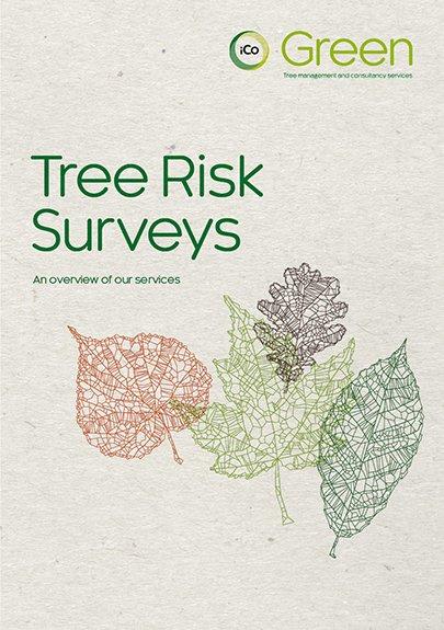 Tree Survey Risks-405
