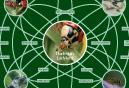 Ladybird Survey