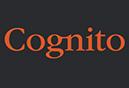 Cognito Identity & Website