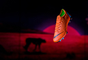 Born Mercurial product launch